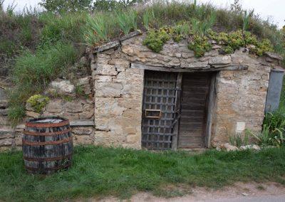 Wein4tlerBauerngarten-14